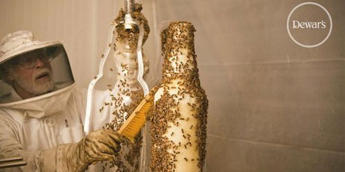 1683350-slide-s-3-how-dewars-printed-a-bottle-with-80000-bees